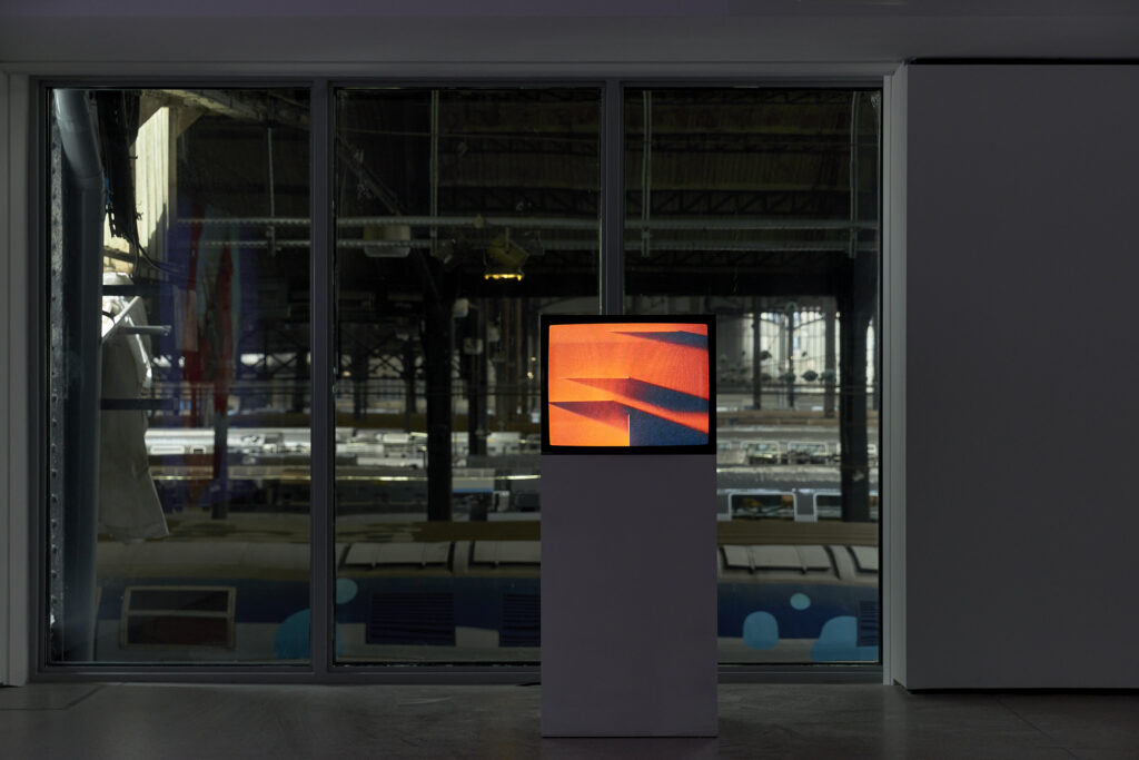 Vue de l'exposition d'Isabelle Cornaro, Infans