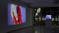 6. Vues de l'exposition d'Isabelle Cornaro, Infans. Photo Thomas Lannes