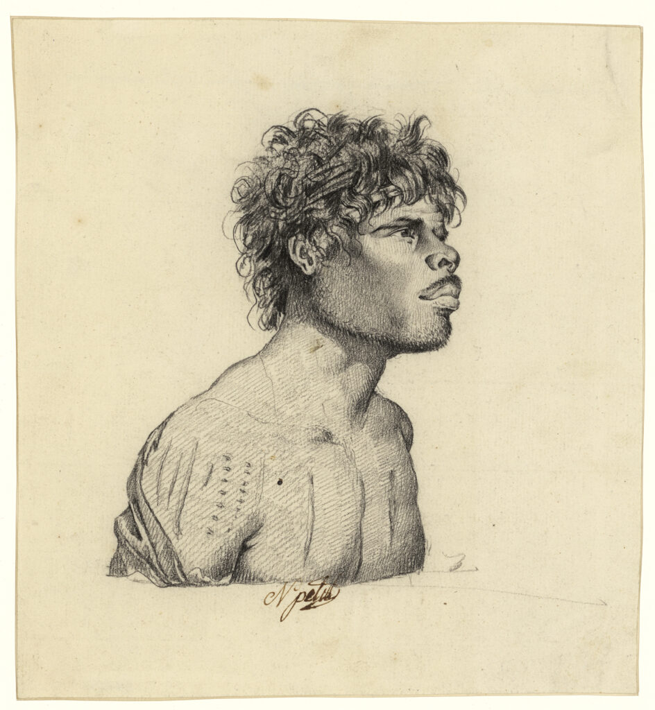 Homme d'Australie, Nicolas Matin Petit