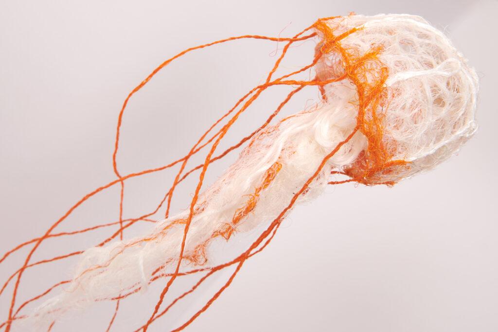 Jellyfish medusa, Lynnette Griffiths