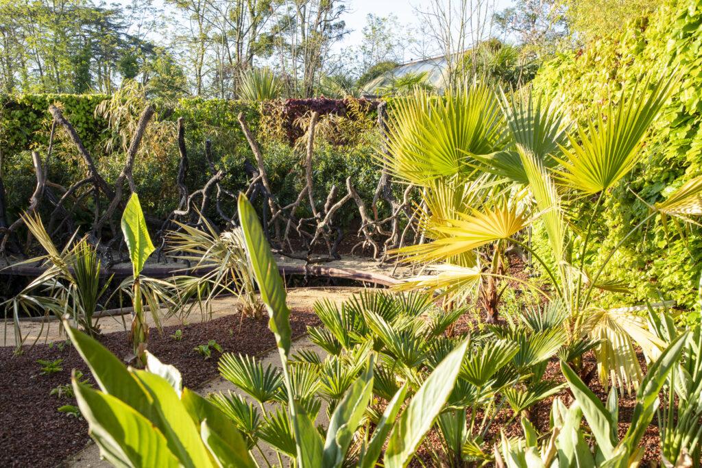 Festival des jardins, Le jardin des mangroves