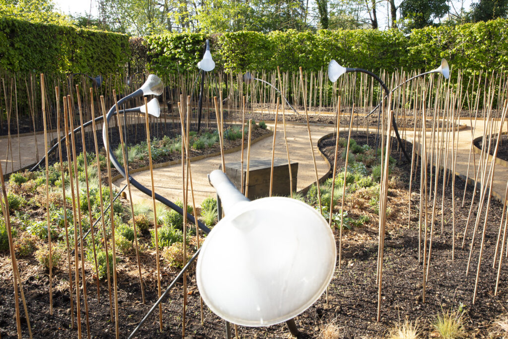 Festival des jardins, Tout est connecté