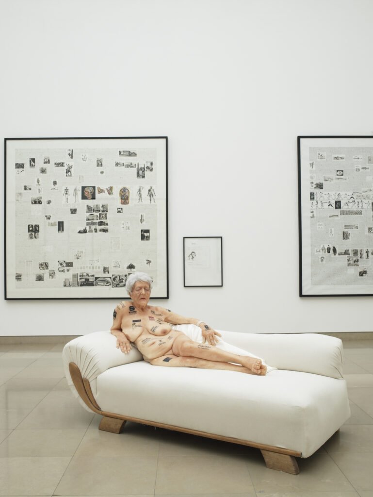 Gilles Barbier, Vieille femme aux tatouages, Vues de l'exposition « Gilles Barbier », Carré d'Art de Nîmes, 2006