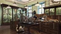 Vue de l'Exposition du Salon des Beaux Arts à la Maison Deyrolle