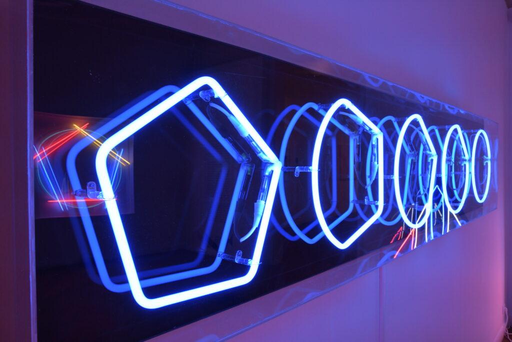 """Vue de l'exposition """"Au-delà des sens"""""""