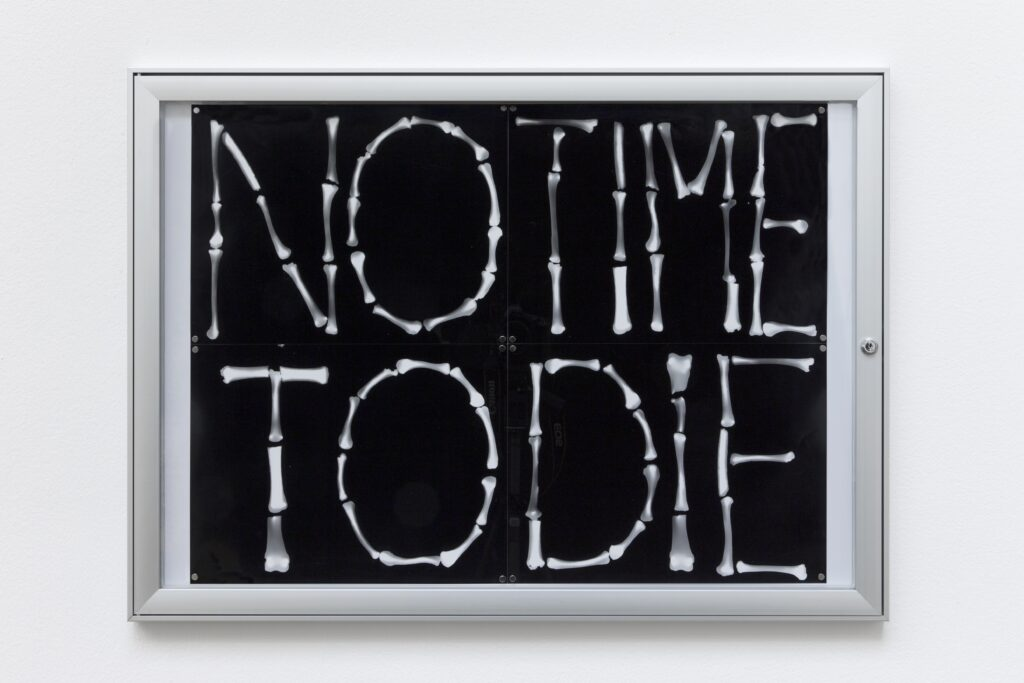 Gina Folly, No time to die, 2020