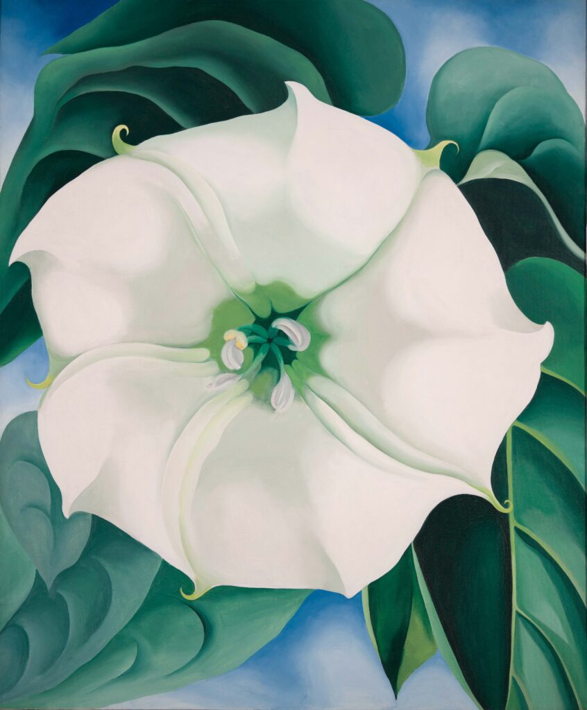 Georgia O'Keeffe, Jimson Weed White Flower No. 1, 1932