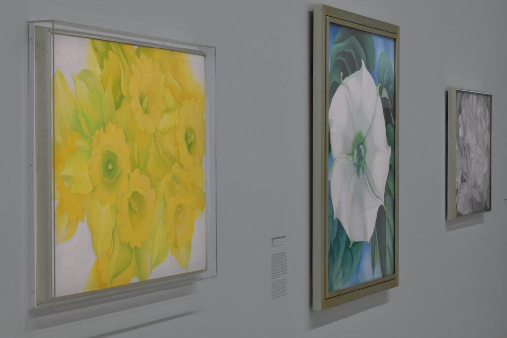 Vue de l'exposion O'Keeffe au Centre Pompidou