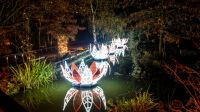exposition-lumières en seine-domaine de saint cloud-Christmas Garden Münster 2019_Schmitz ╕Christmas Garden-Münster4life (6)