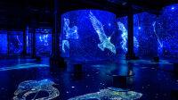 vue de l'exposition-destination cosmos-atelier des lumières 2